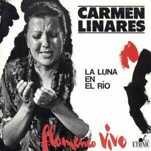 Flamenco Vivo - La Luna en el Río