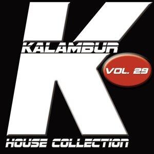 Kalambur House Collection, Vol. 29