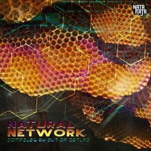 Natural Network