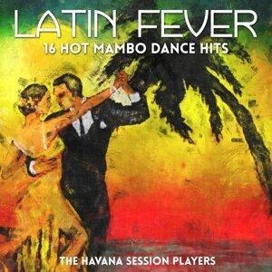 Latin Fever - 16 Hot Mambo Dance Hits