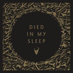 Died in My Sleep