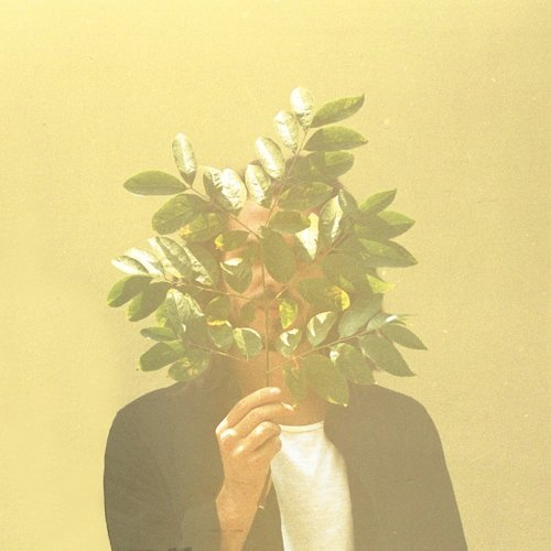French Kiwi Juice