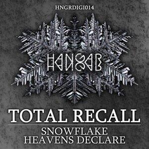 Snowflake / Heavens Declare