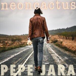 NeonCactus