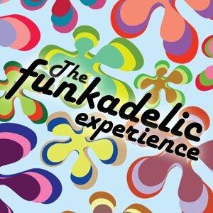 The Funkadelic Experience