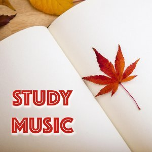 Deep Concentration Study Music