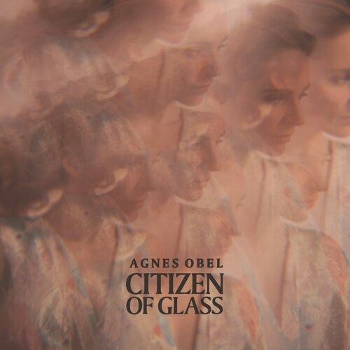 Citizen of Glass - Instrumental