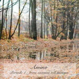 Periode 1: From Summer Till Autumn
