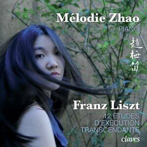 Franz Liszt: 12 Études d'exécution transcendante, S. 139