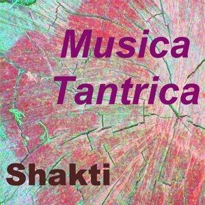 Musica Tantrica - Vol. 4