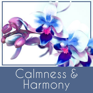 Calmness & Harmony – Spa Music, Deep Sleep, Nature Sounds, Pure Waves, Zen Garden, Soothing Melodies for Relaxation