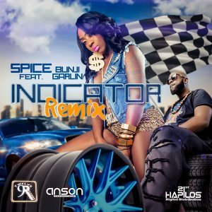 Indicator - Soca Remix