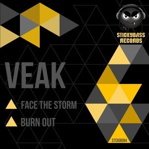 Face the Storm / Burn Out