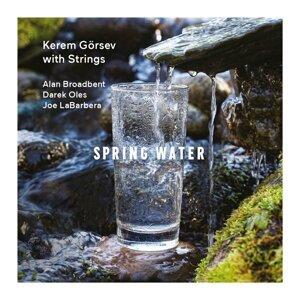 Spring Water - Kerem Görsev with Strings