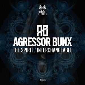 The Spirit / Interchangeable