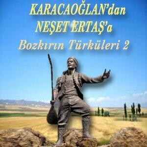 Karacaoğlan'dan Neşet Ertaş'a Bozkırın Türküleri, Vol. 2