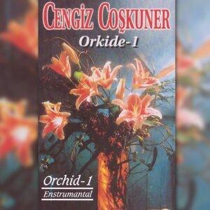 Orkide, Vol. 1 - Orchid - 1 Entrümental