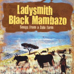 Songs from a Zulufarm