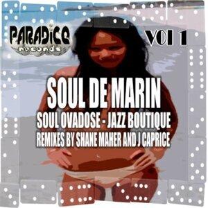 Soul Ovadose, Vol.1 - Jazz Boutique