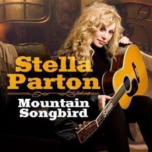 Mountain Songbird (Radio Edit)