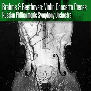 Brahms & Beethoven: Violin Concerto Pieces
