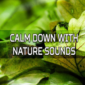 Calm Down with Nature Sounds – Music to Help You Rest, New Age Relaxation, Inner Balance, Mind Peace