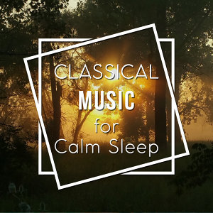 Classical Music for Calm Sleep – Rest with Tchaikovsky, Calm Your Mind, Peaceful Note