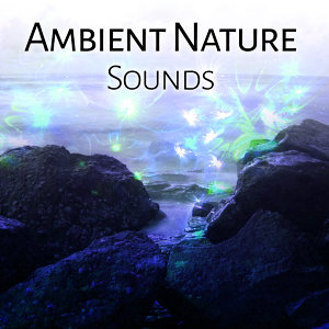 Ambient Nature Sounds – Calm Your Mind, Relaxing Melodies, Stress Free, Inner Harmony