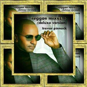 Reggae Mixes + (Deluxe Version)