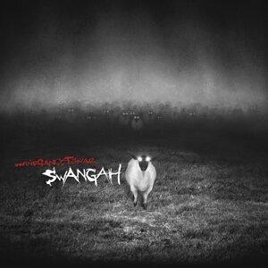 Undirgangstónar - Album Teaser