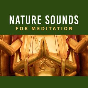Nature Sounds for Meditation – Yoga Training, Spiritual Healing, Meditation Music, Focus, Peaceful Mind