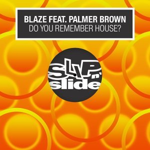 Do You Remember House? (feat. Palmer Brown)