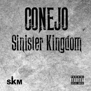 Sinister Kingdom