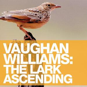 Vaughan Williams: The Lark Ascending