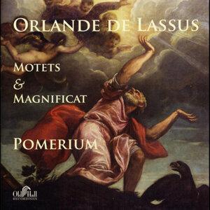 Orlande De Lassus: Motets & Magnificat