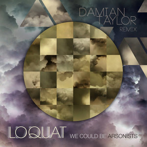 We Could Be Arsonists - Damian Taylor Remix