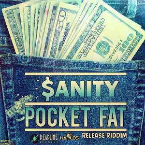Pocket Fat - Single