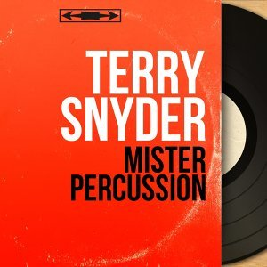 Mister Percussion - Stereo Version