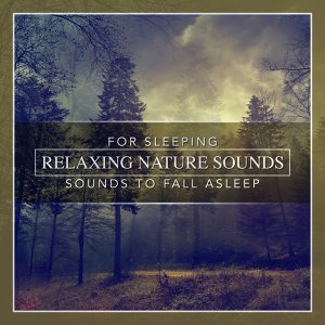 Hours of Relaxing Nature Sounds for Sleeping: Sounds to Fall Asleep: Deep Sleep Sounds