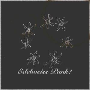 エーデルワイス (パンク風味) (Edelweiss (Punk!))