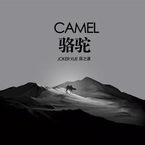 駱駝 搶先聽