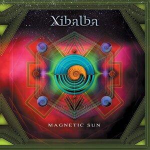 Magnetic Sun (Vinyl)