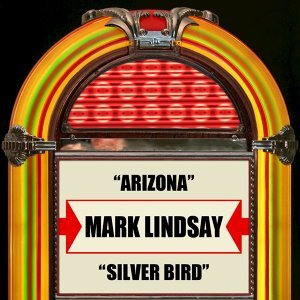 Arizona / Silver Bird