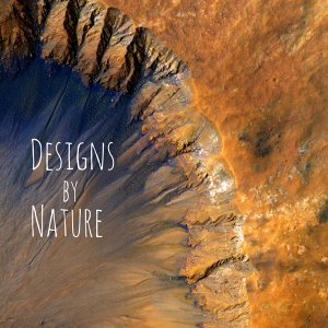Designs by Nature