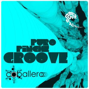 P.P.G ( Puro Piche Groove )