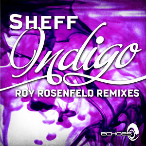 Indigo - Roy RosenfelD Remixes