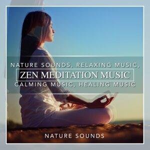 Zen Meditation Music, Nature Sounds, Relaxing Music, Calming Music, Healing Music