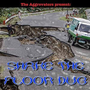 The Aggrovators Present: Shake the Floor Dub