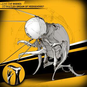 Do Beetles Dream of Hedgehogs?