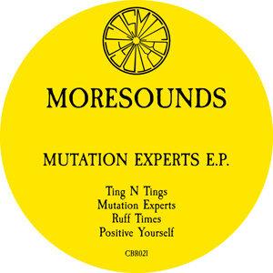 Mutation Experts